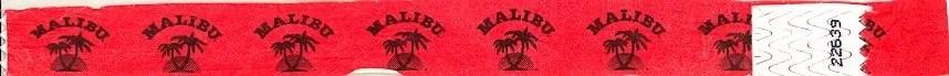 BiSC and Las Vegas 2013 — Flamingo Go Pool — Wristband
