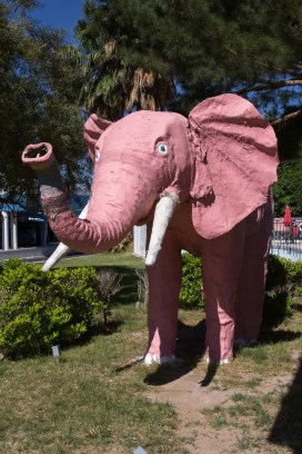 BiSC and Las Vegas 2013 — The Diamond Inn Motel — The Pink Elephant