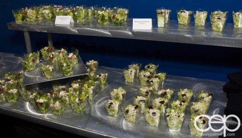 #FordNAIAS 2014 — Day 2 — Cobo Hall — Behind the Blue Oval — Need for Speed Screening — Michigan Salad Shooters & Greek Salad Shooters