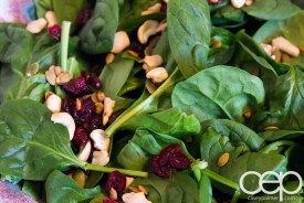 Dempster's DIYSandwich — Danforth Dinner — Salad