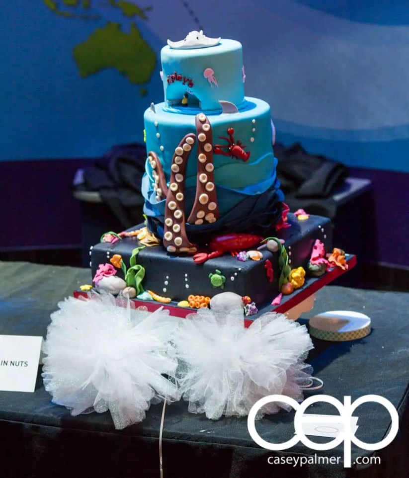 THE MONTHS OF 'BER — On Leave — Ripley's Aquarium of Canada — 1st Birthday Cake