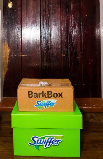 Life as a Swiffer Fanatic, Vol. 2 — Fighting Messes from Other People's Pooches... Because #ShedHappens — BarbBox and Swiffer Green Box at Jenn and Mike's Front Door