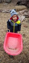 The Month That Was... November 22nd - December 26th, 2015 — Evergreen Winter Village — Little Man with the Wheelbarrow
