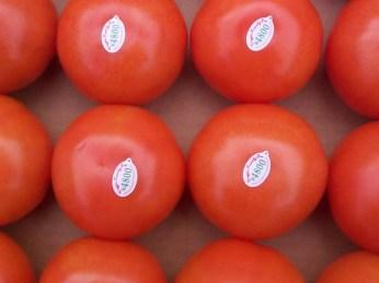 Enjoying Subs the LOCAL Way Courtesy of SUBWAY® Restaurants!!! — Ontario Tomatoes