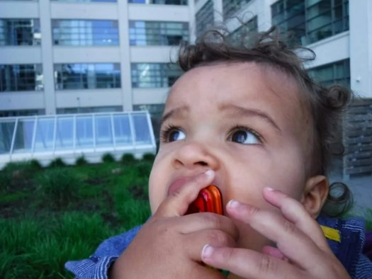 Making Memories Aplenty with the FujiFilm FinePix XP120! — Toddler in the City