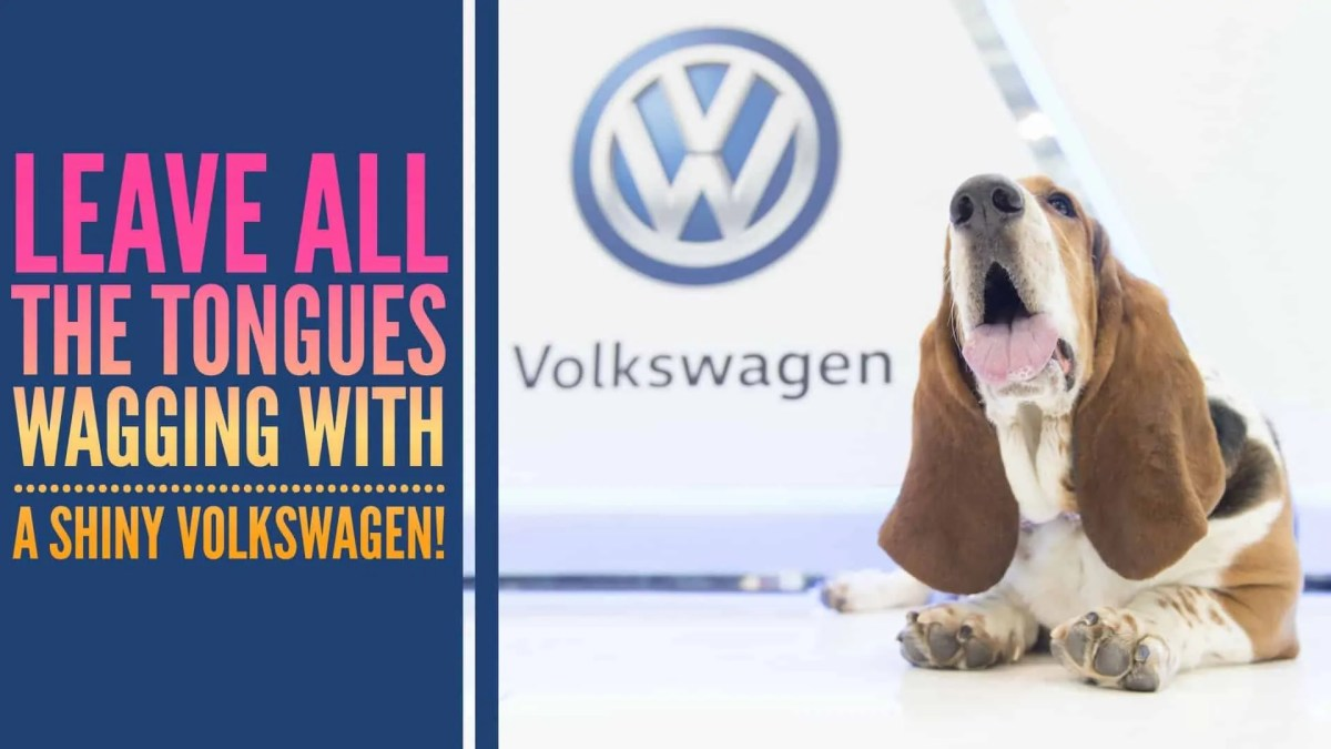 Leave All the Tongues Wagging with a Shiny Volkswagen! (Featured Image)