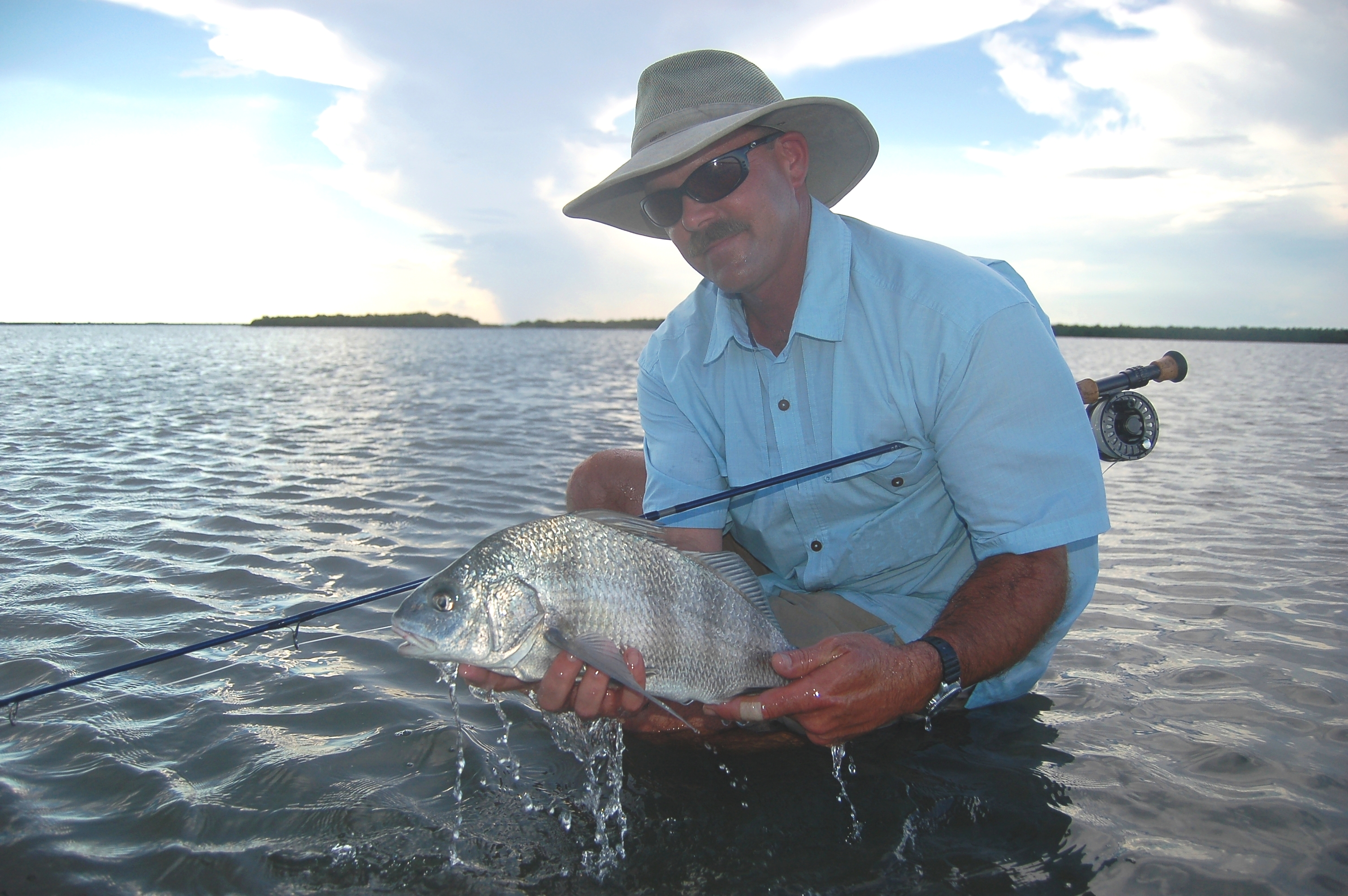 Nose job fly fishing for black drum Fish for jobs
