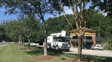 casey tree service chipping trucks