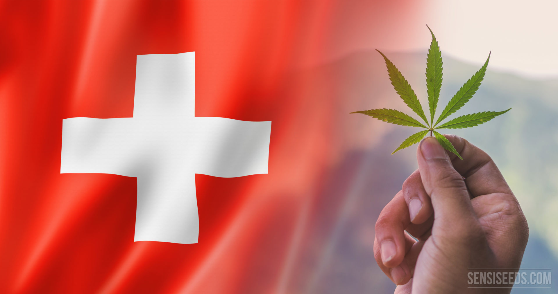 Switzerland Approves Pilot Program, National Council to Rule on Legalization