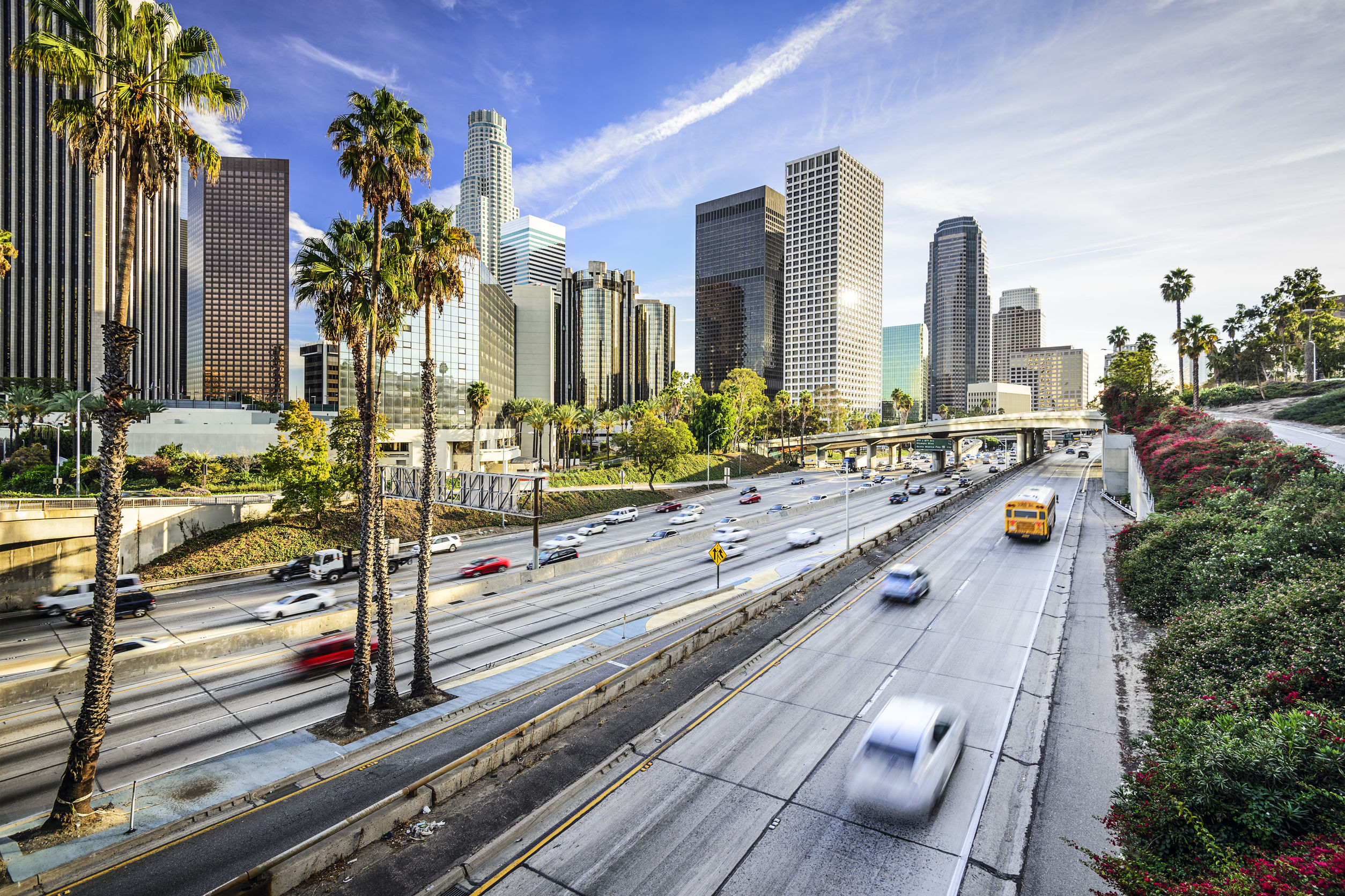 The City of Los Angeles Has Begun Accepting Applications for Cannabis Licenses