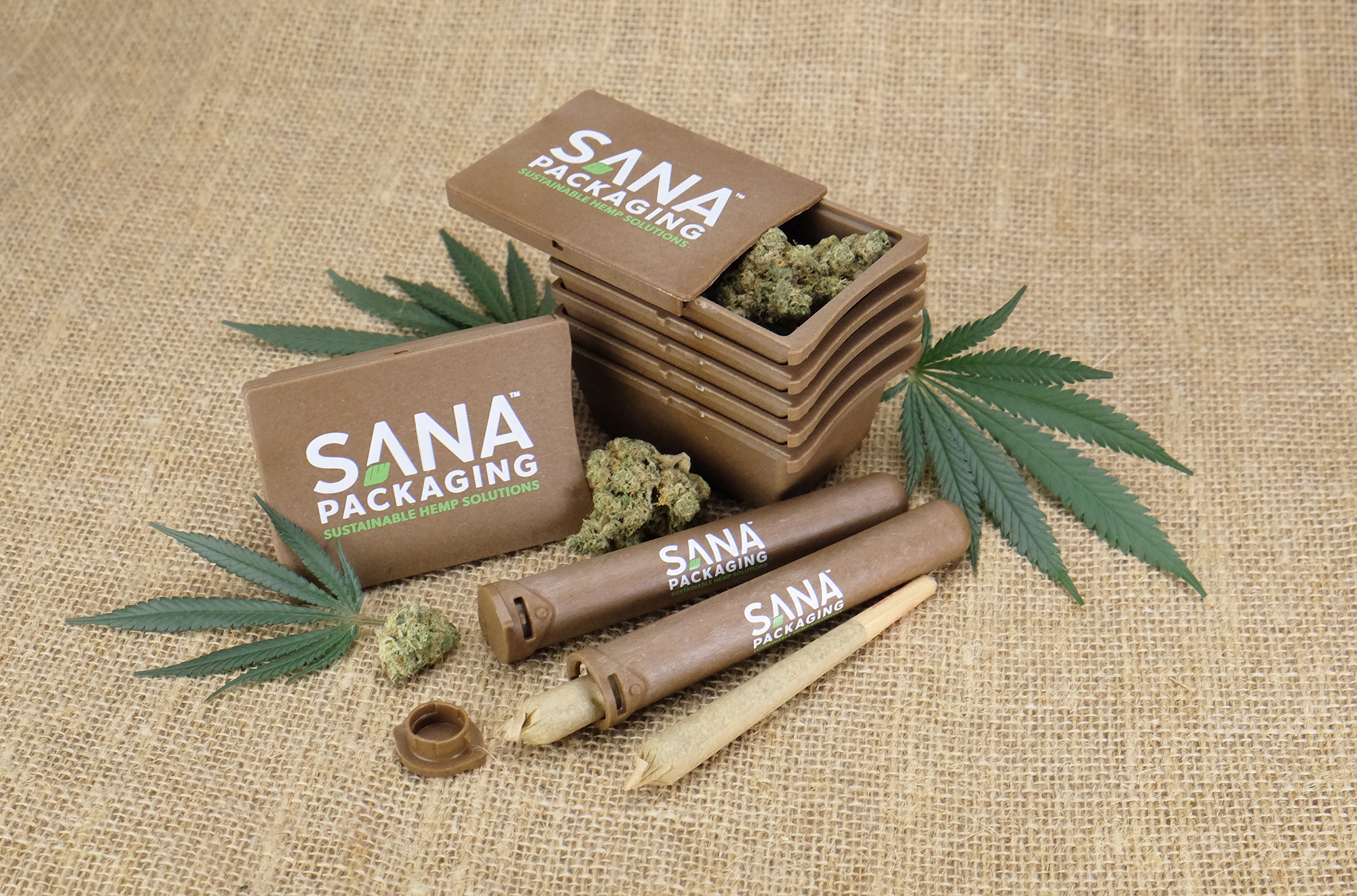 CCT Leaders: Sana Packaging