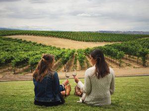 106948030 1632771199801 california wine tastin t20 b8kRnV scaled