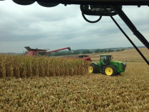 It hard to determine from this picture, but we are harvesting corn on one of our steeper hillsides.  The going is a bit slower.