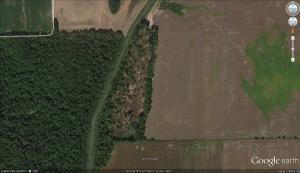 Here is a screen capture from Google Earth of this woods that is being cleared.