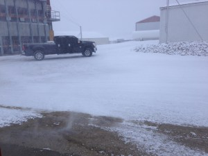 From the farm office, we could see an almost white-out for a little while