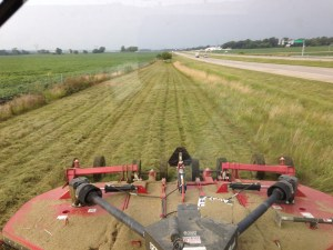 """Mowing along US 50 just outside of Wheatland, Indiana.  This is a priority, for the community is hosting its annual """"Wheatfest"""" this weekend.  Also mowed was the levee at the Burke farm.  The new fescue is taking hold there quite nicely."""