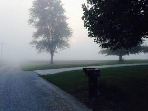 While retrieving the morning newspaper, it was apparent that travel would be slower until the fog burns off!