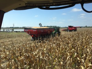 The new grain cart worked very well...