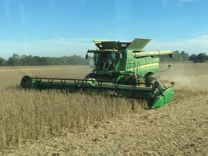 Here we were back on September 27th, having a very fun day in the soybean field!
