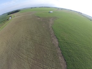 This is one of the photos of 'bad news' from Burke.  You can see Kessinger Ditch at left, then the grassy levee, and the the large brown area of mud-coated soybeans from the left to the center of the pic.  This brown area will need a replant when the soil dries.