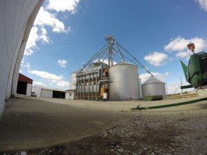 Our grain system on a perfect, end-of-summer day