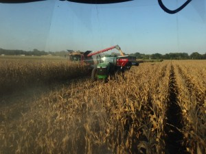Wrapping up the final rows at the Steen farm, south of Wheatland, along US 50. You can see Ross in the CIH 8230 unloading on-the-go into the Demco 1350 grain cart pulled by Brandon in the JD 9360R