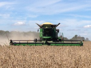 French guest Damien is operating the S680 combine in the soybeans today.