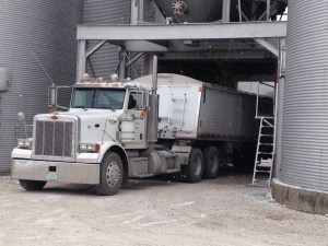 The Pete gets loaded here with soybeans headed to ADM Newburgh