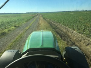 Mowing the lane at Huey to clean up the appearance