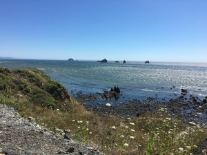 "The Oregon coast has ""don't-miss-it"" scenery"