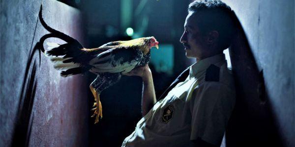 Por las plumas, cine costarricense_ Casi literal