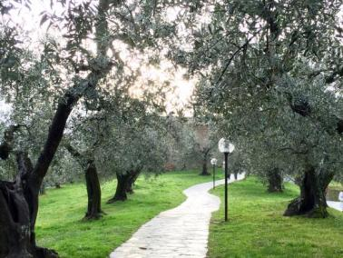 casa-natale-di-leonardo (2)
