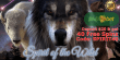 Jumba Bet 40 FREE Spins on Saucify Spirit of the Wild New Game Offer