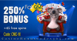 Fair Go Casino The King of Bonuses 250% Match plus 45 FREE RTG Cash Bandits 2 Spins Special Deal