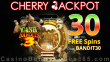 Cherry Jackpot Special New RTG Game 30 FREE Spins on Cash Bandits 3 Special Offer
