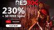 Red Dog Casino 230% Match plus 50 FREE Achilles Deluxe Spins New RTG Game Slots Bonus