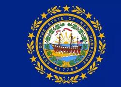 New Hampshire State Flag - Casino Genie