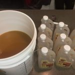 Adding apple cider to brewing bucket