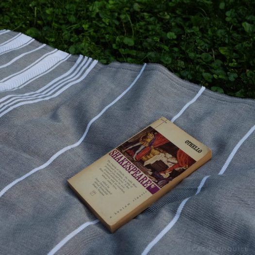 Othello, Shakespeare, reading in the grass with a blanket