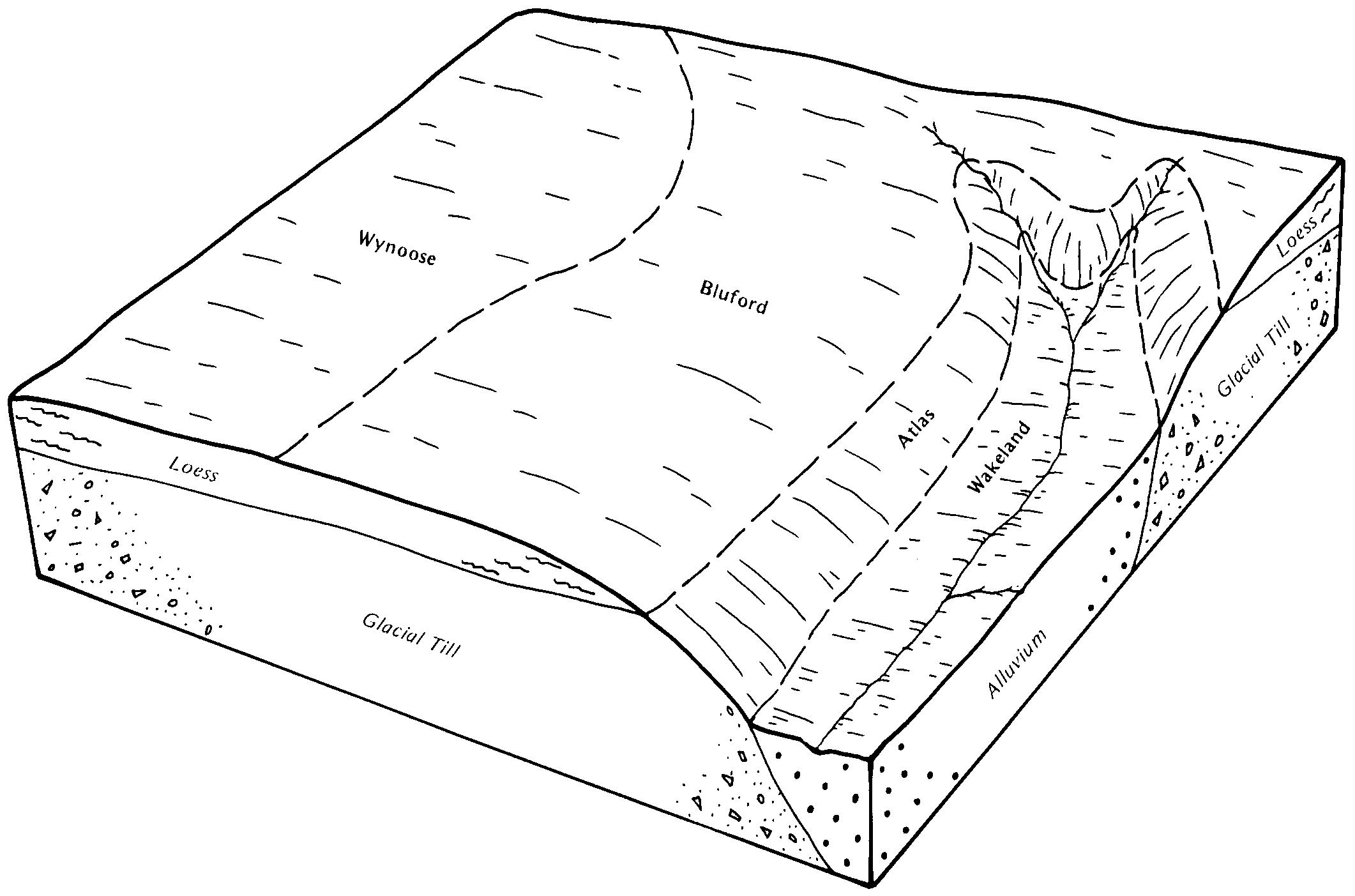 SoilWeb Soil Series Summary