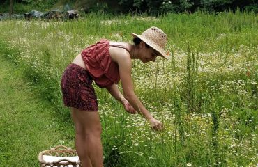 picking fresh organic camomile tuscan yoga retreat in cortona with yoga master and caspin journeys