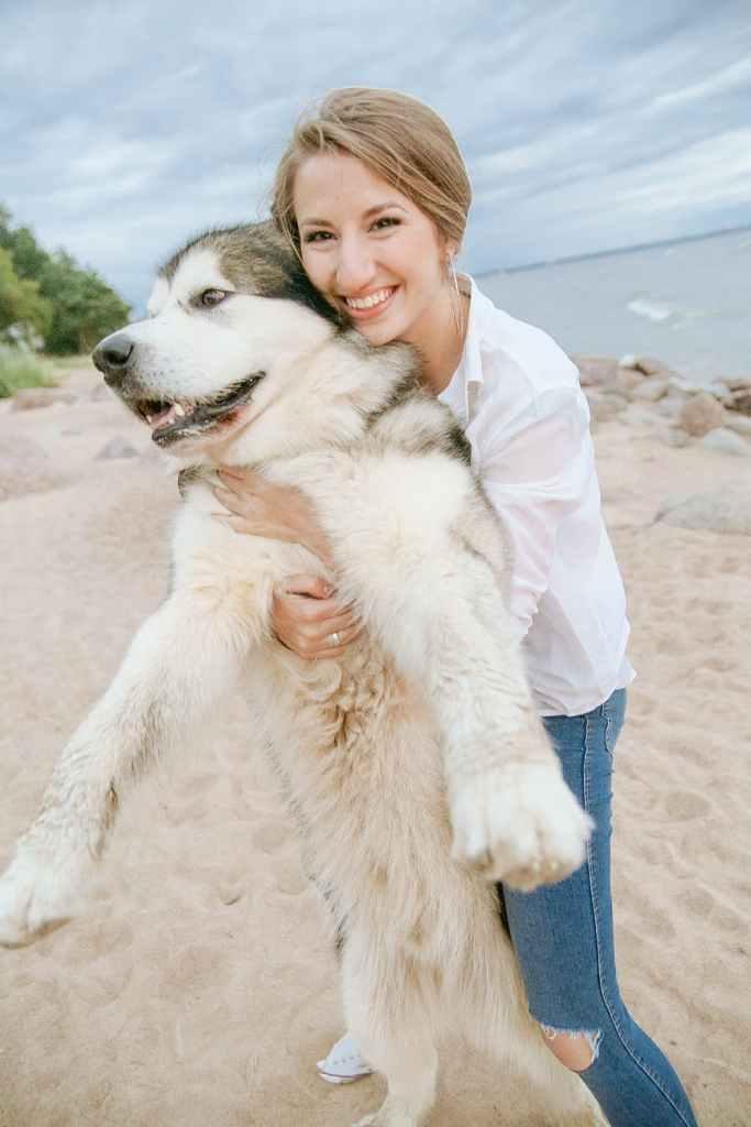 woman holding white siberian husky puppy