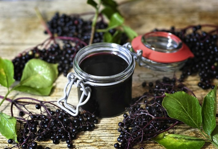 elderberry and syrup