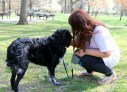 Photoshoot with Andrea Labenz and her 1-year-old Austrailian Shepherd, Jax, taking a walk at Elmwood Park (by Cassidy Conrad)