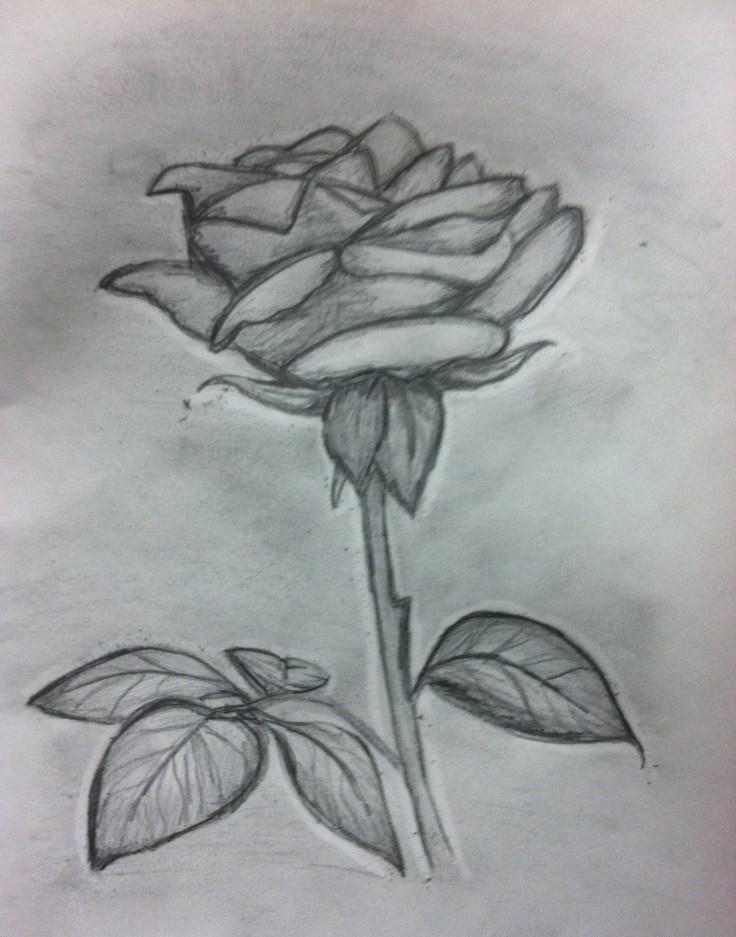 """Pencil- 'In Loving Memory"""" Rose"""
