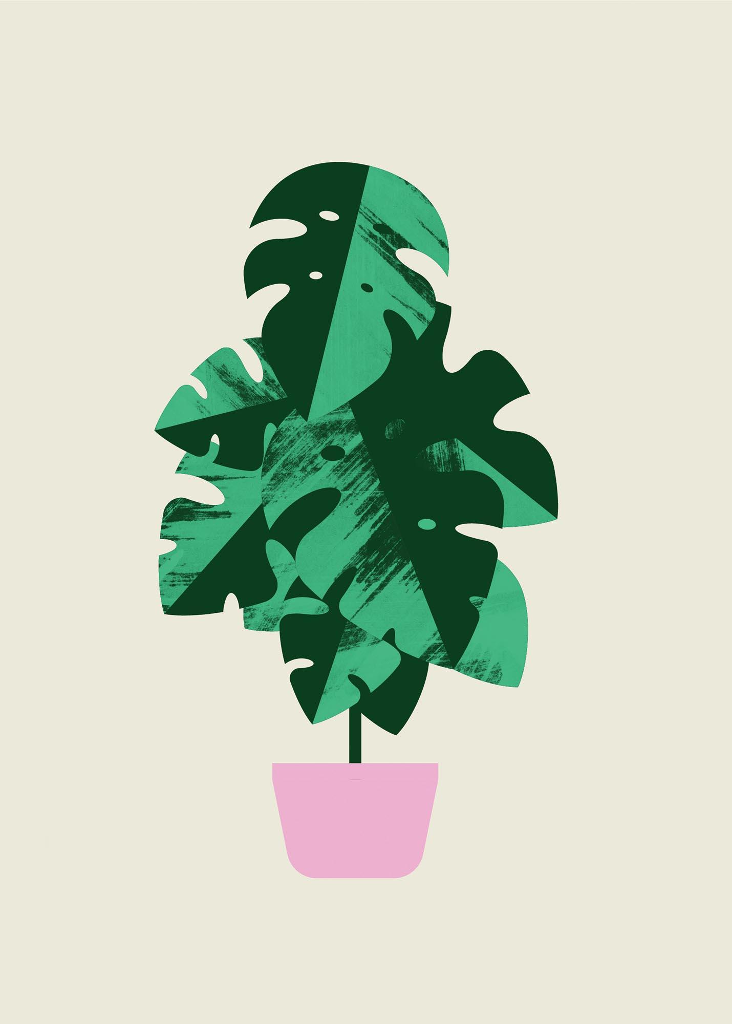 Plant Sit — Monstera