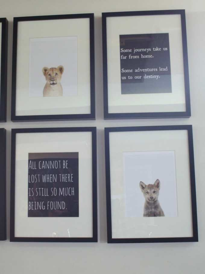 animal print shop and book quote gallery wall
