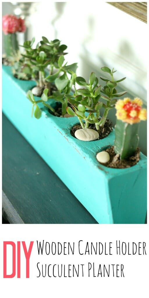 DIY succulent planter from wooden candle holder