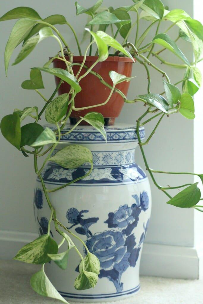 Blue and White porcelain plant pedestal