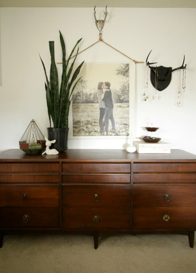 Midcentury Dresser with Antler Jewelry Display, Snake Plant- Bohemian